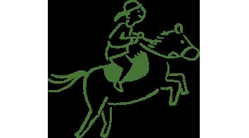 ハーモニィセンターの乗馬体験・レッスン